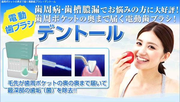 歯周ポケットを掃除する電動ハブラシデントール